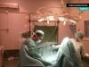 criptorquidectomia