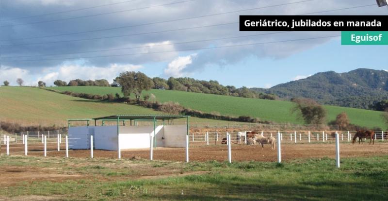 geriatrico2