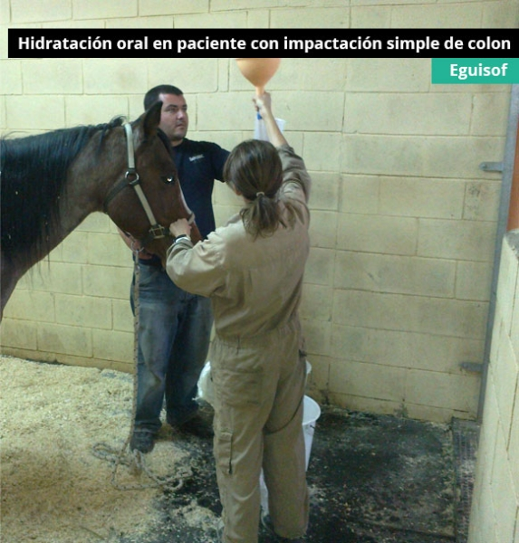 hidratacion-oral-en-paciente-con-impactacion-simple-de-colon